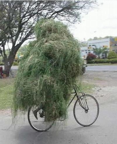 Juste une histoire normale de 3 cyclistes en balade en haute-savoie ! | Toute l'actus | Scoop.it