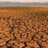 Agriculture du XXI siècle, adaptation et atténuation