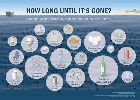 How Long Until It's Gone? - Infographic | In Deep Water | Scoop.it