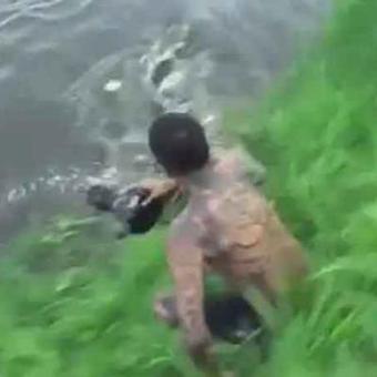 Un crocodile manque de peu un photographe imprudent (vidéo) | Mais n'importe quoi ! | Scoop.it