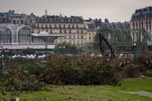 Abattage des arbres du jardin des Halles, un chantier sous haute surveillance !, Photographies du projet des Halles | Projet les Halles | Scoop.it