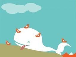 Career-limiting moves in socialmedia | Mudmap | Scoop.it
