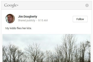 Google Plus embed options are a great way to integrate G+ into your ... | EAv | Scoop.it