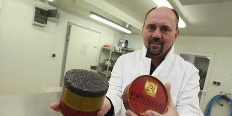 Le caviar est la nouvelle truffe du Périgord | Caviar de Neuvic | Scoop.it