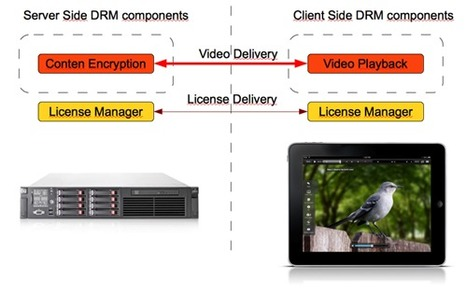 iOS DRM : implementing content protection on iOS devices | Video Breakthroughs | Scoop.it