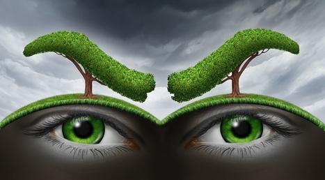 Quand la nature contre-attaque | Objection de croissance | Scoop.it