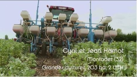 1 uth agriculture
