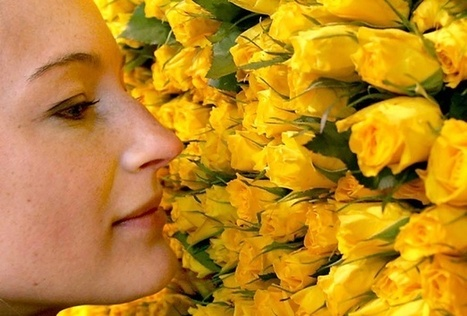Study: Humans Can Smell 1 Trillion Scents | Music, Videos, Colours, Natural Health | Scoop.it