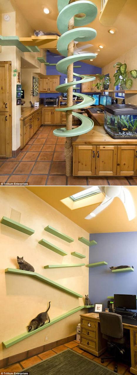8 Craziest Home Renovations   STEM   Scoop.it