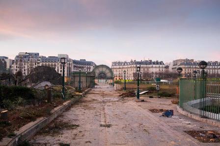 Allée Andrée Breton, le lendemain de l'abattage des arbres du jardin des Halles | Projet les Halles | Scoop.it