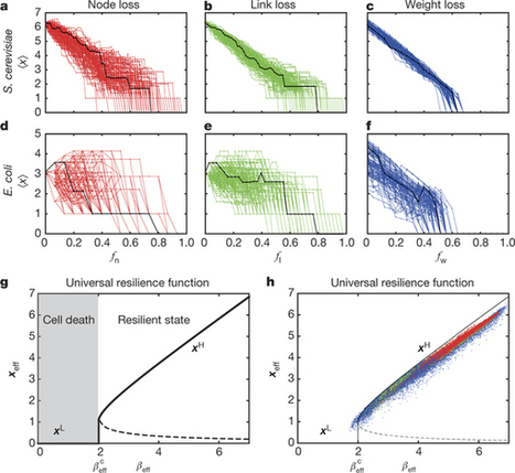 Universal resilience patterns in complex networks | Papers | Scoop.it