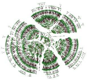 Un arbre généalogique de 13 millions de personnes ! | RoBot généalogie | Scoop.it