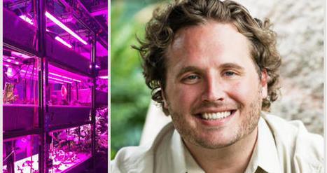 Foodtech : L'homme qui murmurait à l'oreille des plantes   L'Atelier : Accelerating Innovation   Innovation dans l'Immobilier, le BTP, la Ville, le Cadre de vie, l'Environnement...   Scoop.it