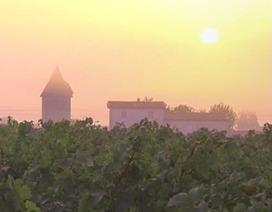 Médoc : le groupe Mähler-Besse vend le château d'Arche au Chateau la Lagune - Vitisphere.com   Le vin quotidien   Scoop.it