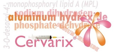 Fraudulent Vaccines: Cervarix, like Gardasil, doesn't do what was claimed | Health Supreme | Scoop.it