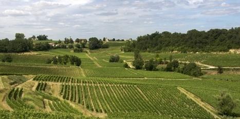 Saint-Emilion pourrait reclasser ses petits châteaux mécontents - Challenges.fr | dordogne - perigord | Scoop.it
