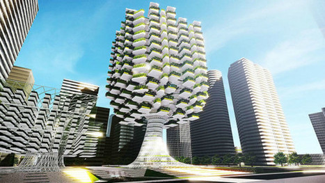Building Cities Like Forests: When Biomimicry Meets Urban Design | self-directed_learning | Scoop.it
