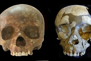Fossil Teeth Suggest Humans Played Role in Neanderthal Extinction   Geology   Scoop.it