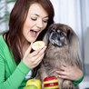 Harmful Foods For Your Pets