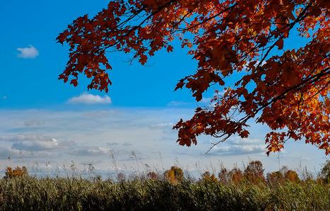 Fuji X-E1 Review by Nick Devlin   Luminous-Landscape   Photography Gear News   Scoop.it