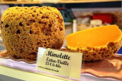 La mimolette en quarantaine aux Etats-Unis | Brazilian cheeses | Scoop.it
