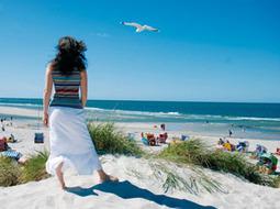 L'Île d'Amrum en Mer du Nord près de Sylt et Föhr   Allemagne tourisme et culture   Scoop.it