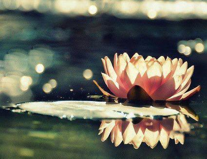 When Emotion Overtakes You - Ram Dass | Making Peace With Your Emotions | Scoop.it