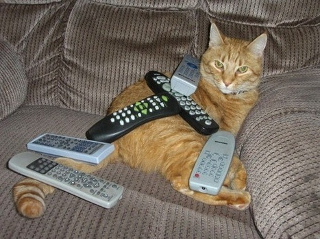 The IPKat: CJEU says that EU has external competence to negotiate international agreements on broadcasting rights | Copyright compliance | Scoop.it