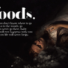 Go go go to the woods! Movie! Movie! Movie! Brutally weird! Manic mystical!