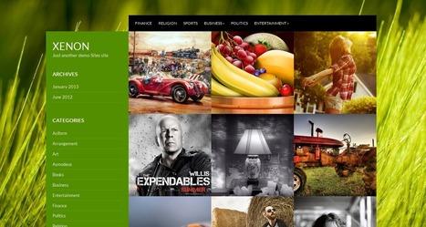 21 Best Free WordPress Themes - January 2013   Webdesign Freebies   Scoop.it