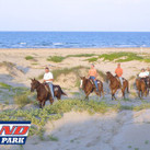 Island Adventure Park Hiding in South Padre Island | Texas Coast Real Estate | Scoop.it