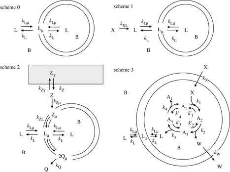 On stochastic simulation of minimal cell models   Origin of Life: Emergence, Self-organization and Evolution   Scoop.it