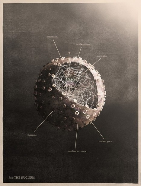 3D Generative Visualizations of Scientific Theories by MRK | visual data | Scoop.it