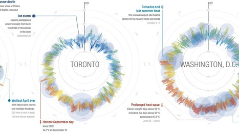 Data visualization infographics scoop 365 days of weather in 35 cities all in a single beautiful image data publicscrutiny Images