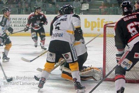 Les Boxers n'iront pas en finale de la Coupe de France de Hockey | Bordeaux Gazette | Scoop.it