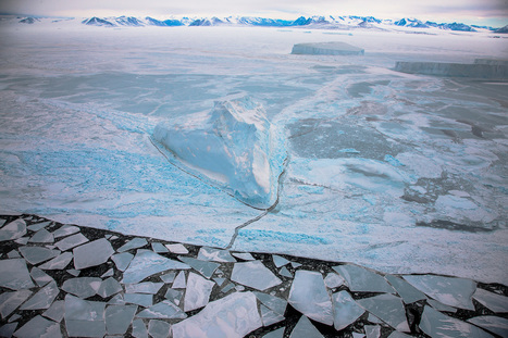 World's Largest Marine Reserve Created Off Antarctica | Antarctica | Scoop.it