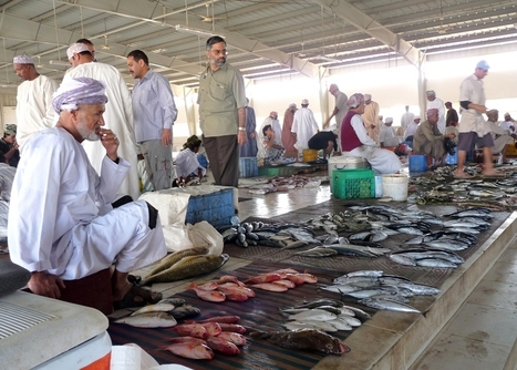 Arabian Gulf countries to expand fisheries sector - World Fishing | Fisheries & Fishing Technology | Scoop.it