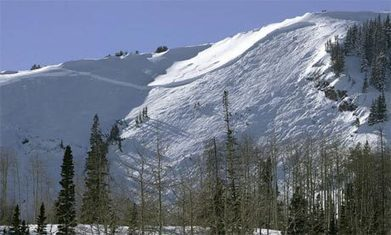 Surviving an avalanche: moving in the right direction | TRENDS IN HIGHER EDUCATION | Scoop.it