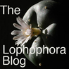 The Lophophora Blog