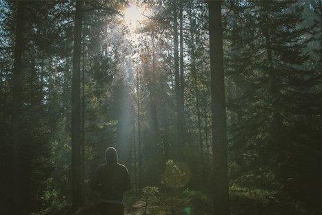 Adobe Lightroom Shares Light Stalking Article | Light Stalking | Scoop.it