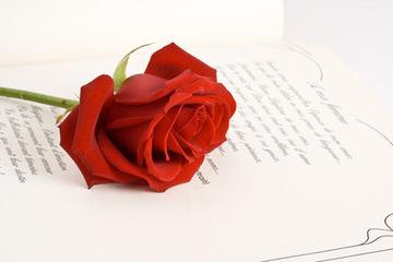 23 de abril: Día internacional del libro y del derecho de autor | La Miscelánea | Scoop.it