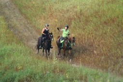 HITM for 12-09-2014 – Endurance Day – Winter Riding Tips, An Endurance Transplant, AERC Rule Changes   HORSES IN THE MORNING   Endurance Riding   Scoop.it