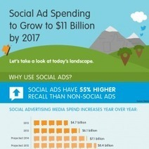 The Social Advertising Landscape | Visual.ly | Social Media for Optometry | Scoop.it