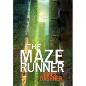 The Maze Runner book review | Brink Library Links | Scoop.it
