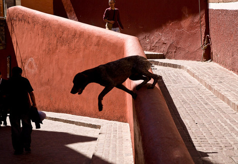 """Ed Peters """"A Few Seconds To Frame"""" 