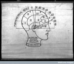 thInk | Neuroscience and Learning | Scoop.it