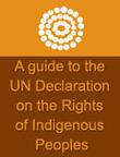 Information Sheet - Social justice and human rights for Aboriginal and Torres Strait Islander peoples   Curriculum Resources   Scoop.it