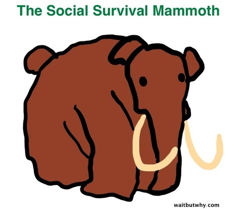 Taming the Mammoth: Why You Should Stop Caring What Other People Think - Wait But Why | Potpourri | Scoop.it