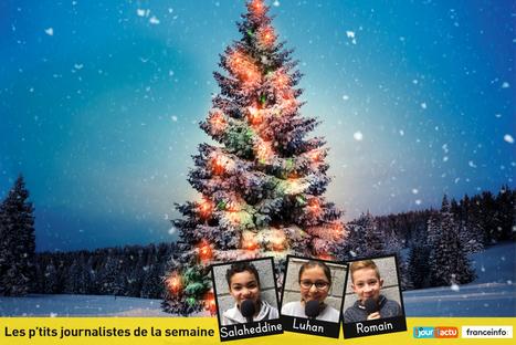 Sapin de Noël, qui es-tu ? - 1jour1actu.com - L'actualité à hauteur d'enfants ! | FLE enfants | Scoop.it