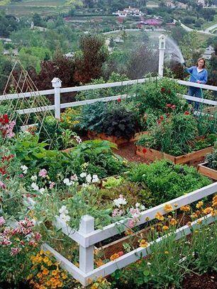 Ideas verdes jardinera Scoopit
